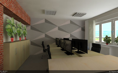 Office Renovation for Budapest-based IT Company